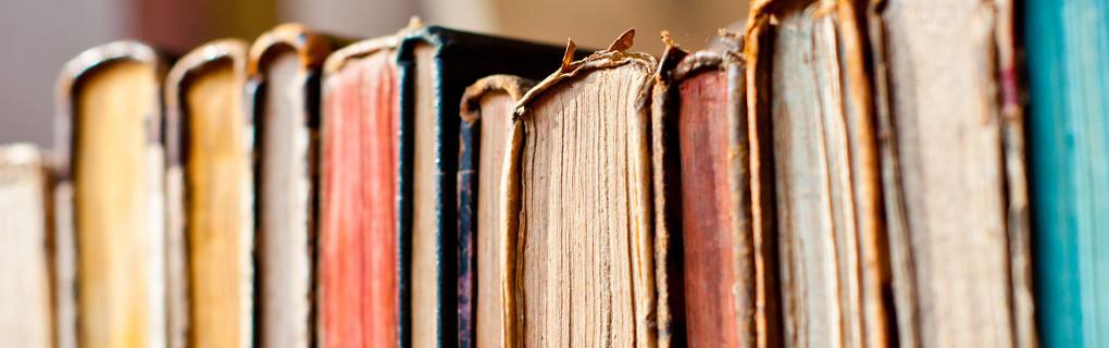 il catalogo delle biblioteche inbook